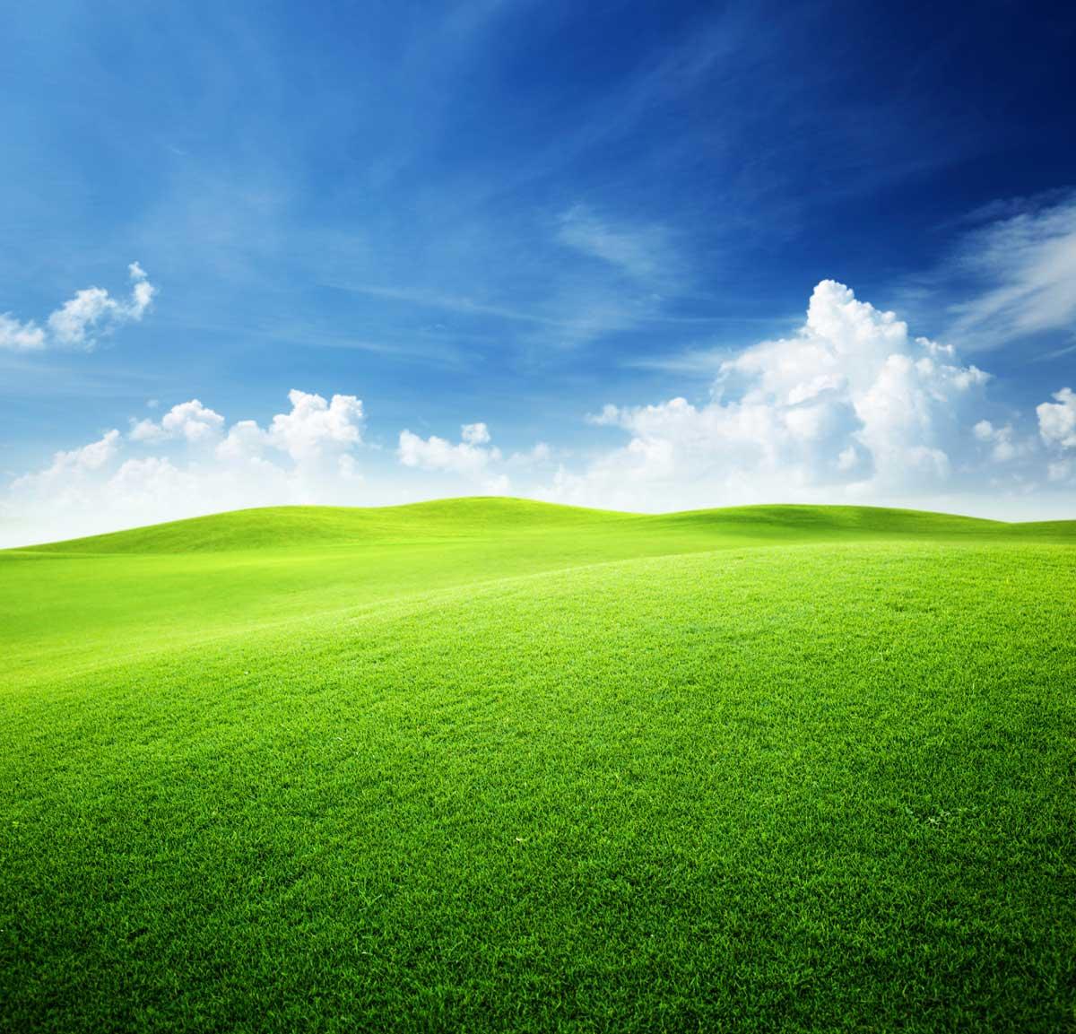 rolling-fields